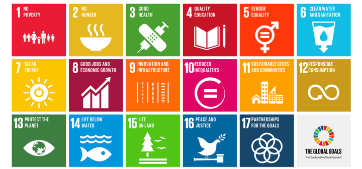 Image of the table of global sustainable development goals.