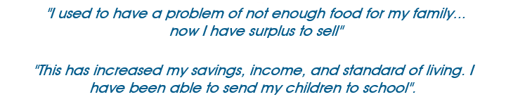 "An image of quotation text, stating ""I used to have a problem of not enough food for my family... now I have surplus to sell. This has increased my savings, income and standard of living. I have been able to send my children to school""."