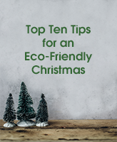 Top Ten Tips for an Eco-Friendly Christmas blog image with three small Christmas Trees on a grey background